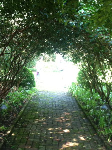 Passageway - photo by Lisa Z. Lindahl