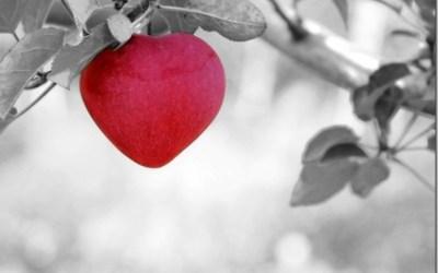 Comment être dans l'amour véritable