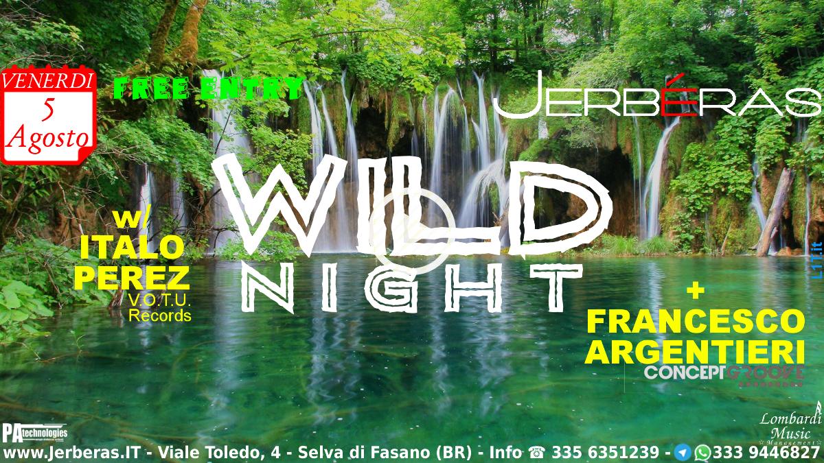 Wild Night 2.0 @ Jerbéras