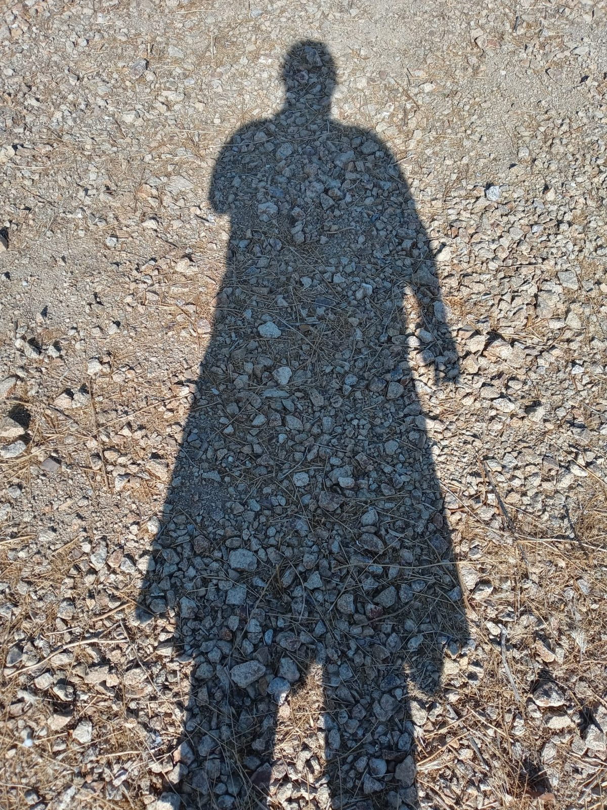 shadow me