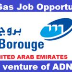 Latest Job Vacancies in Borouge 2020 | Any Graduate/ Any Degree / Diploma / ITI |Btech | MBA | +2 | Post Graduates  | UAE,Singapore,UK,USA,Worldwide
