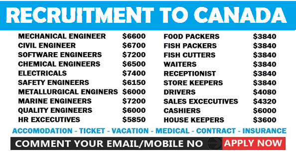 Huge Job Recruitment in Canada |Engineering Jobs,Account Jobs,Medical Jobs,Cruise Jobs, Officers Jobs,and More Job Vacancies |Accomodation|Medical|Insurance |Apply Online