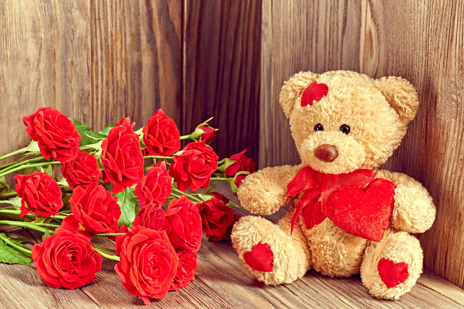 Red Roses And Cute Teddy Bear Picture Wallpaper Hd