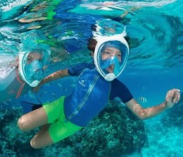 What Is The Best Full Face Mask For Diving