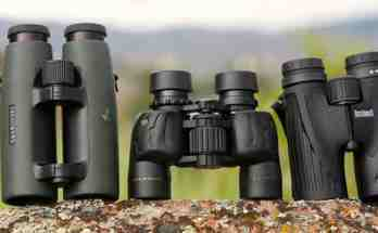best binoculars for birds
