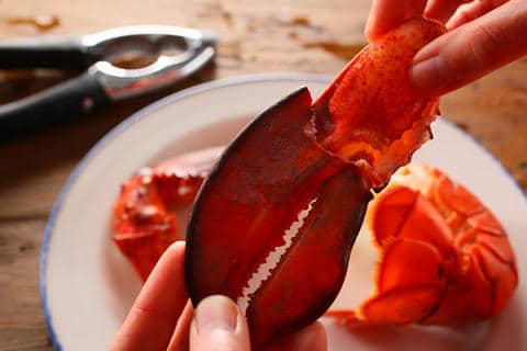 Summer entertaining: Steamed Lobsters | ListPlanIt.com