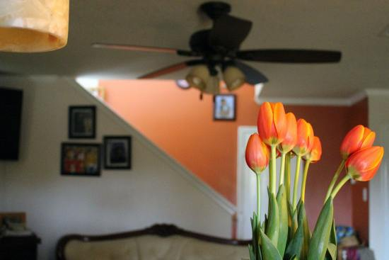 how to add a pop of color to any room