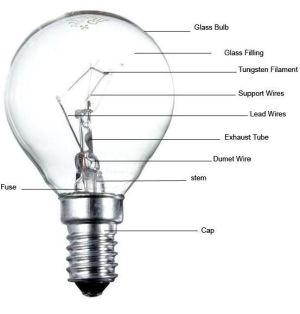 Learning with Litecraft : Thomas Edison  Litecraft