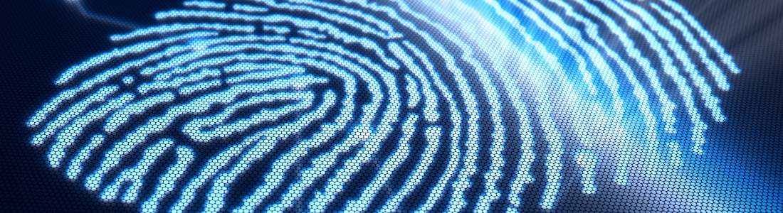 Forensic Collection of Electronically Stored Information