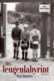 Omslag Het leugenlabyrint - Paul Binnerts