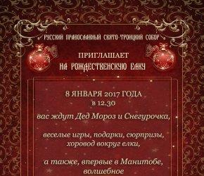 РОЖДЕСТВЕНСКАЯ ЕЛКА и ШОУ СВЕТОВЫХ КАРТИН 'Новогодняя сказка'
