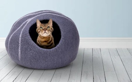 Bengal cat in a cat nest cat bed
