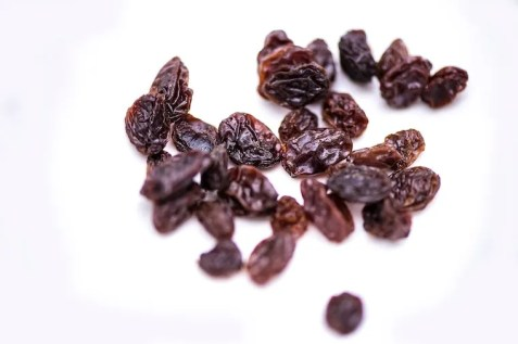 Raisins scattered on white surface - can cats eat raisins?