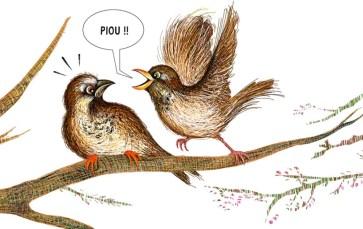 moineaux qui se donnent des noms d'oiseaux