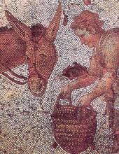 Âne - Mozaïque byzantine du Ve siècle