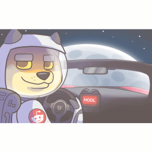 Doge Driving to the Moon
