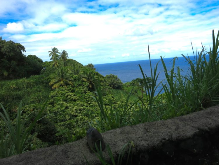 Road to Hana Coastline and Tropical Forest