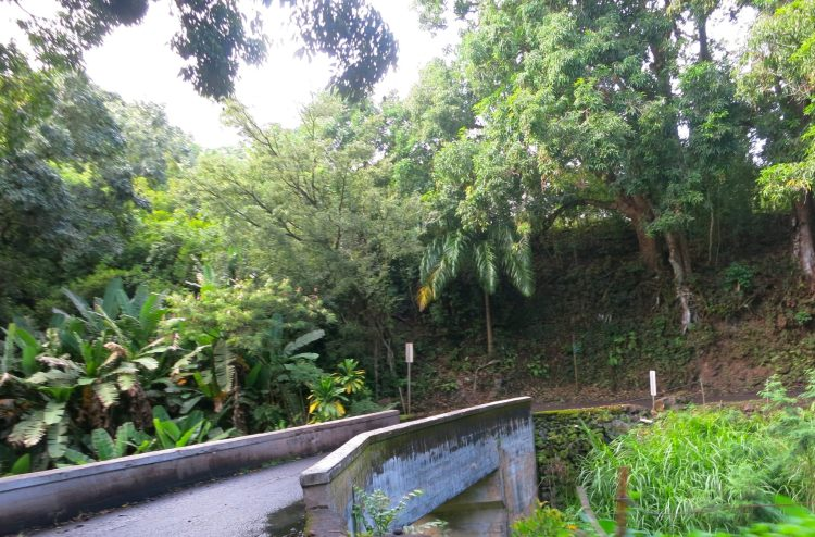 CROSSING A ONE LANE BRIDGE ALONG ROAD TO HANA