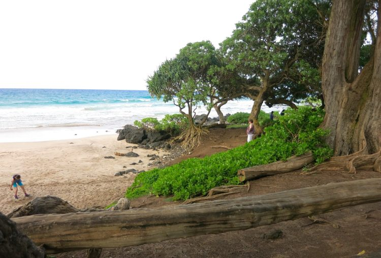 Koki Beach in Maui Hawaii