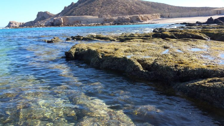 Chileno Bay is in the top 7 things to do near Cabo San Lucas.