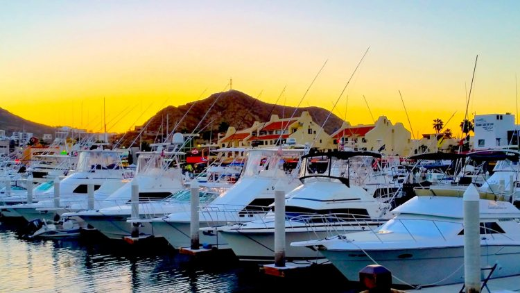 Awesome things to do in Cabo San Lucas. Read my top 7 on the blog.