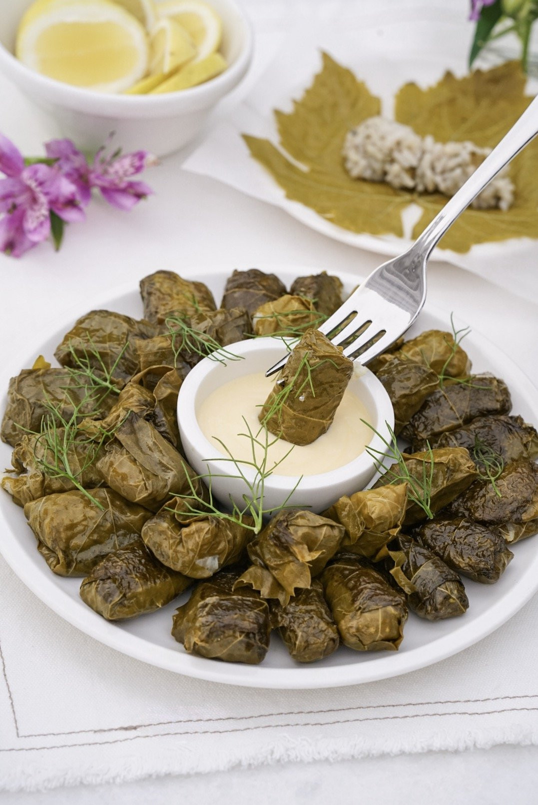 Stuffed Grape Leaves Dolmades dairy and gluten free