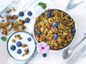 Grain Free Paleo Granola (Dairy & Gluten FREE)