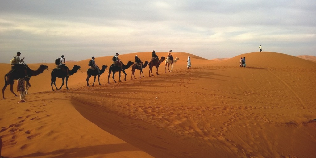 Camel train in the desert | Advice what to wear in the UAE winter for a desert safari | Little City Trips