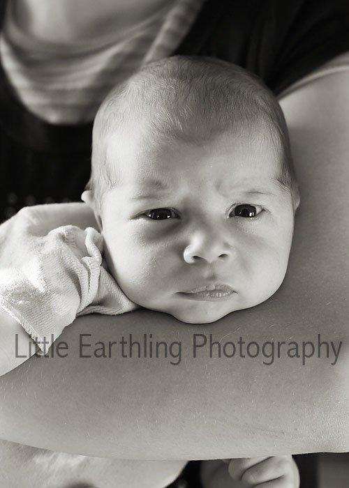 Apollo newborn