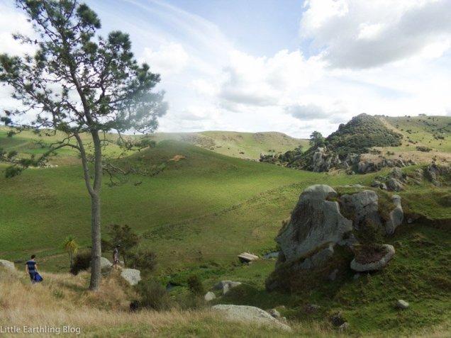 Traveling to New Zealand as an unaccompanied minor. Horseback riding in New Zealand.