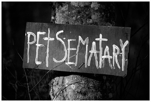 Hand painted Pet Sematary sign.