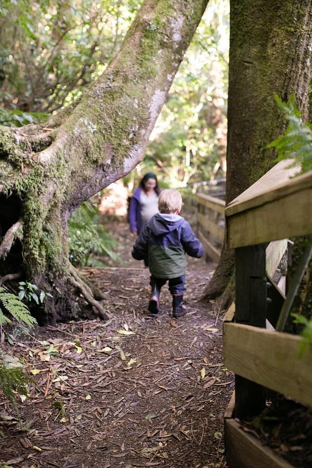 Hiking at Pukaha National Wildlife Reserve