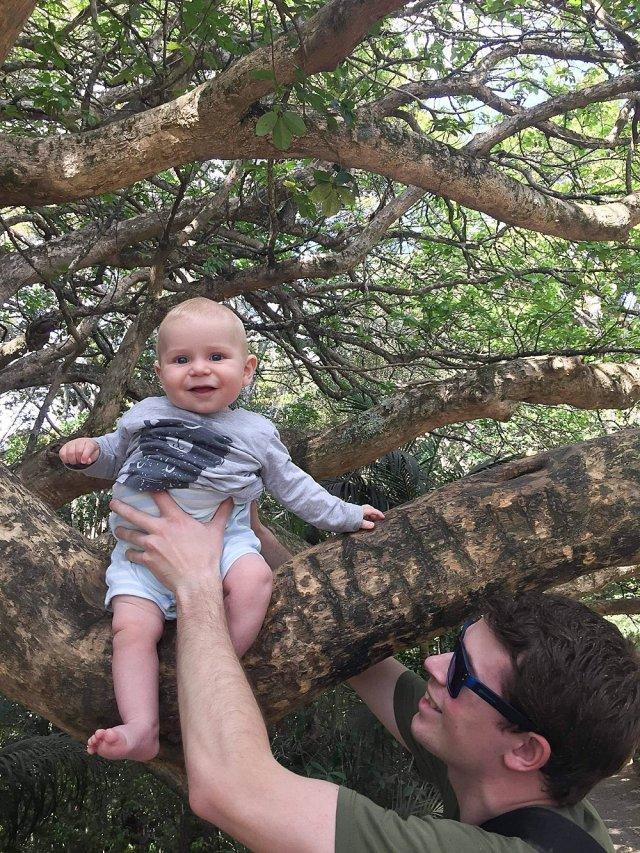 Abel in a tree