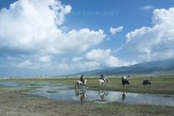 青海_Qinghai