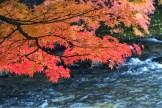 青森黑石中野紅葉山_Nakano Momijiyama,Aomori