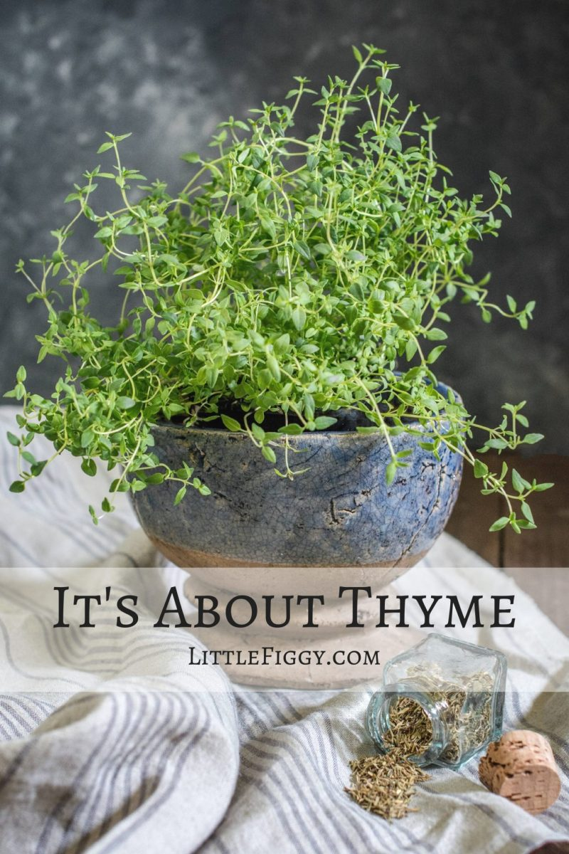 It's About Thyme, tips and ideas on how to use this delicate herb - written by guest blogger Claire from Sumo Chef. Find recipes and more at Little Figgy Food.