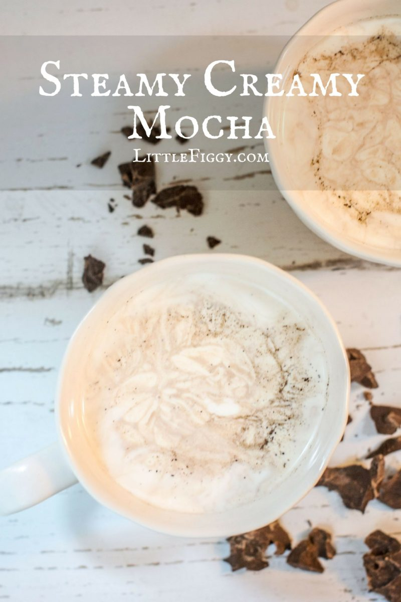 Steamy Creamy Mocha to keep you cozy warm during those cold days. Get the recipe at Little Figgy Food!