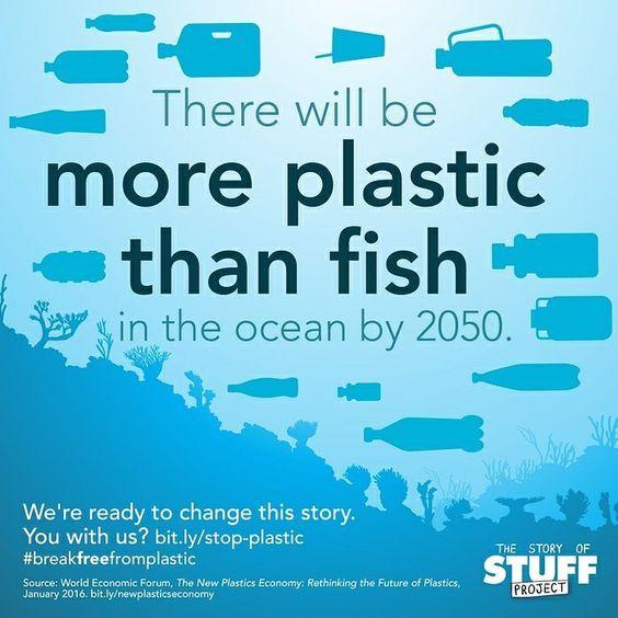 pollution plastique dans les océans