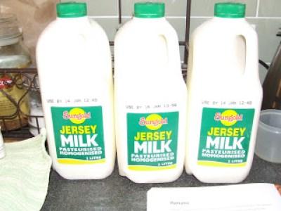 Jersey Milk