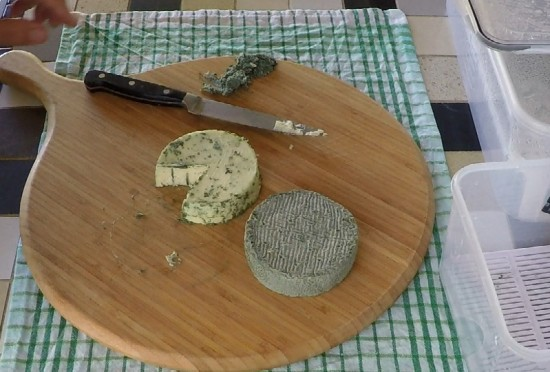 small blue cheese after scraping off mould