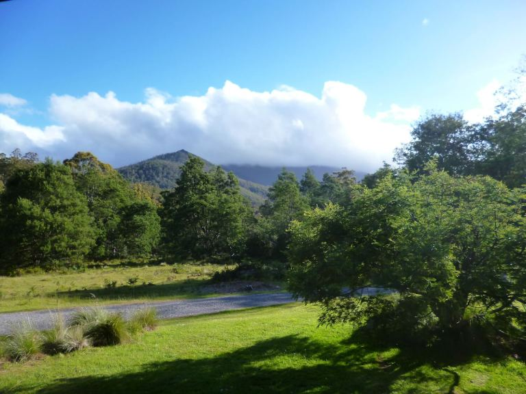 Tasmania hills and forest green