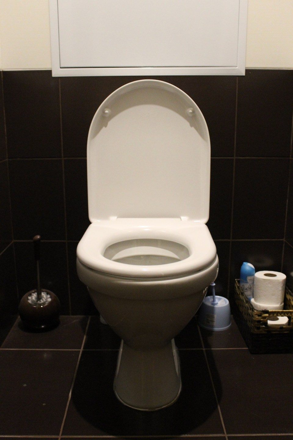Where Does Your Poo Go?