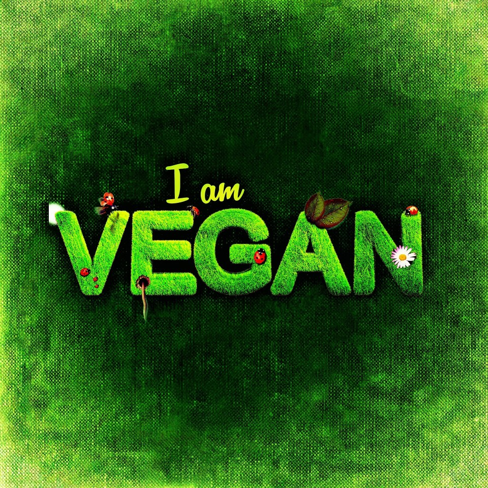 Vegans Take Heart: You Do More Than You Know