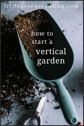 Vertical gardens capture attention more than traditional #garden designs, as well as allowing you to #grow your own #food. #gardening #sustainablility