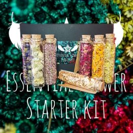 dried flowers kit