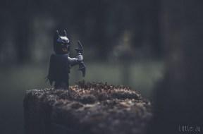 Le gardien des tombes