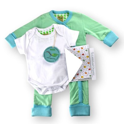 Organic Baby Grow and Short Sleeved Body Suit b y LittleLeaf