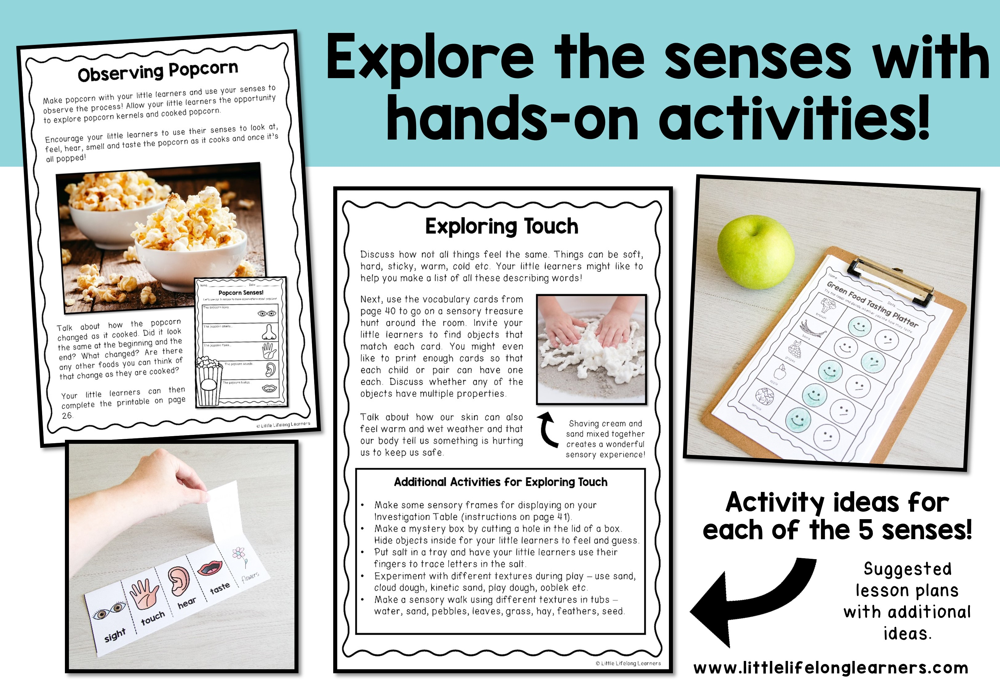 5 Senses Science Unit