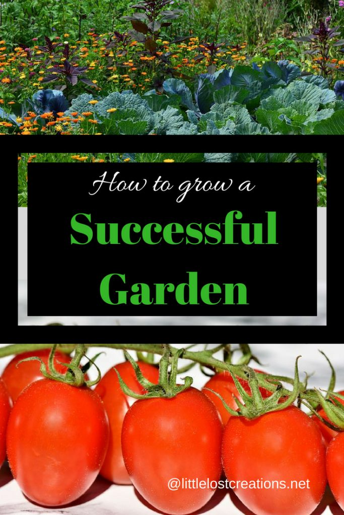 How to grow a successful garden
