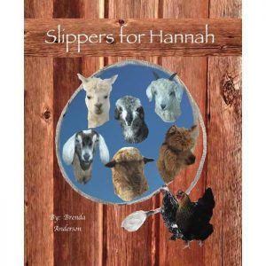 Barn wood cover with rope filled with farm animals. 3 goats, 1 sheep, 2 alpacas and 1 chicken, Slippers for Hannah, Brenda Anderson